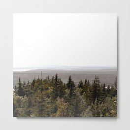 Acadia Views Metal Print
