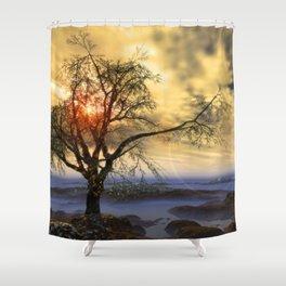Tree in November sun Shower Curtain