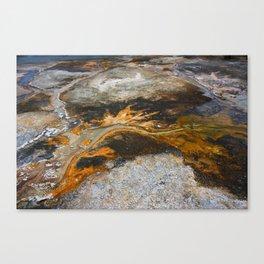 Earth's Artwork Canvas Print