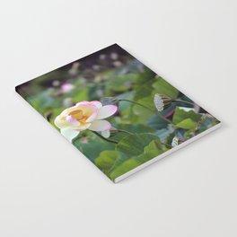 Aquatic Garden Lotus 2 Notebook
