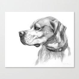 Pointer Dog Portrait G037 Canvas Print