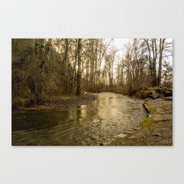 Rios de Oregon 2 Canvas Print