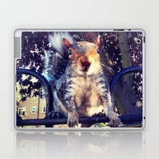 Going nuts Laptop & iPad Skin