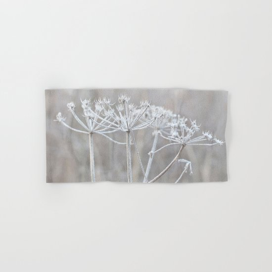 cow parsley plant  with hoarfrost in winter Hand & Bath Towel