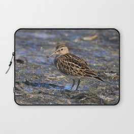 Party with Pectoral Sandpipers Laptop Sleeve