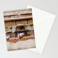 Fountain Flowers Stationery Cards