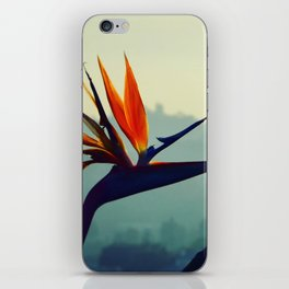 Portrait of Paradise iPhone Skin