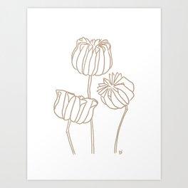 Seed Pods Botanical Print (Brown and White) Art Print