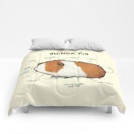 Anatomy of a Guinea Pig Comforters