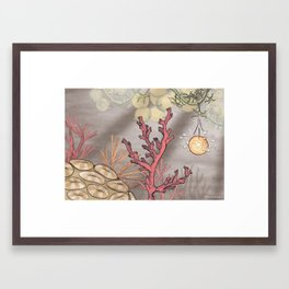 Little Moon – Coral Reef Framed Art Print
