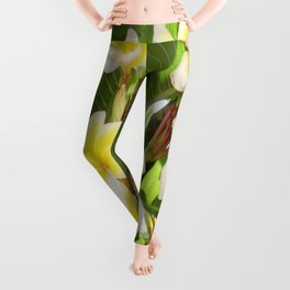 White and Yellow Frangipani Flowers with Leaves in Background  Leggings