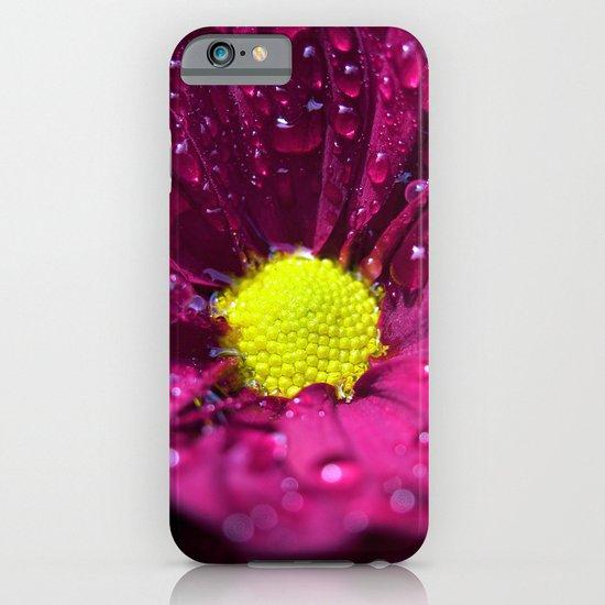 purple bloom II iPhone & iPod Case