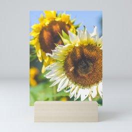 Pollination Mini Art Print