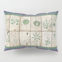 The Voynich Manuscript Quire 1 - Natural Pillow Sham