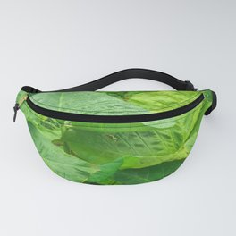 Florida: Lush Forest 2 Fanny Pack