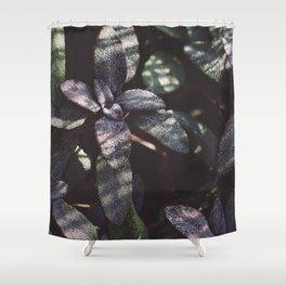Dewy Purple Sage Shower Curtain