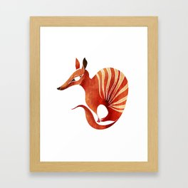 Numbat Framed Art Print