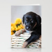 puppies Stationery Cards featuring Puppies by Photography By SidD