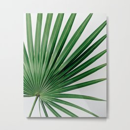 Palm Leaf Detail Metal Print
