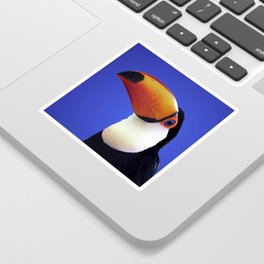 Toco Toucan Sticker