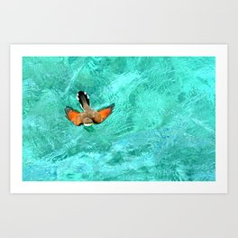 Swimming Bird Art Print
