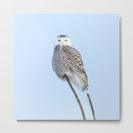 My kind of marshmallow Metal Print