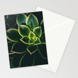 Dark Green Succulents - Nature Photography Stationery Cards