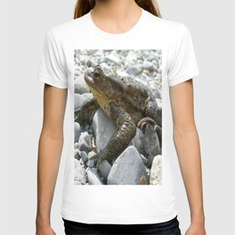 Bufo Bufo Toad Lounging On Stones T-shirt
