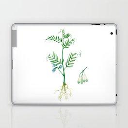 Lentil Laptop & iPad Skin