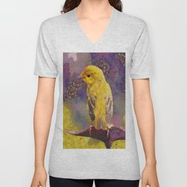 Wild Bird Abstract Colorful Painting Unisex V-Neck