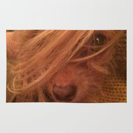 FARRAH MAiSEY (shelter pup) Rug