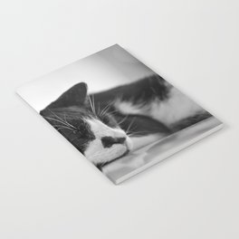 Sleeping Cat Notebook