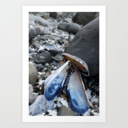 The World is Your Mussel Art Print