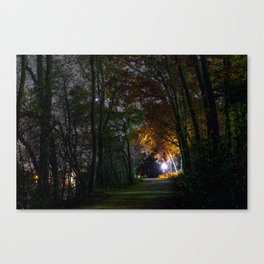 One light for us all Canvas Print