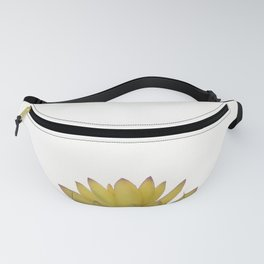 Cactus in flower pot on white background Fanny Pack