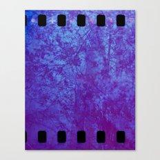 Pink & Purple Blossoms Canvas Print