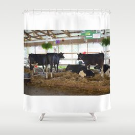 Black and white cow 2 Shower Curtain
