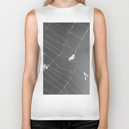 Fluid Nature - Spider's Lunch - garden photography Biker Tank