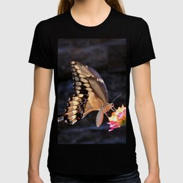 Swallowtail Overexposed T-shirt