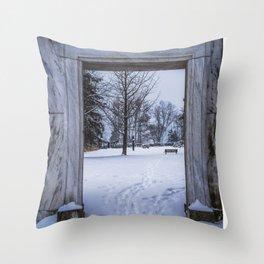 Winter Views Throw Pillow
