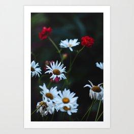 White & Red Art Print