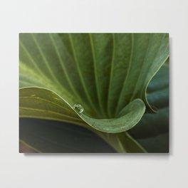 a drop on green Metal Print