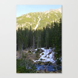 The Snow is Melting Canvas Print