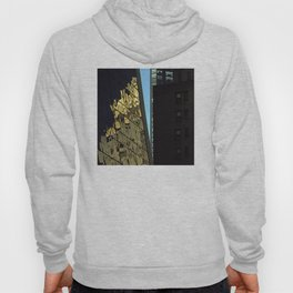 Reflections of New York City Hoody