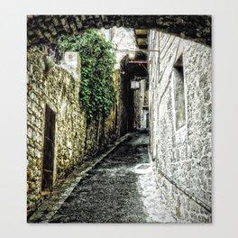 Tuscany pathway Canvas Print