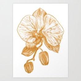 Gold Orchid V Art Print
