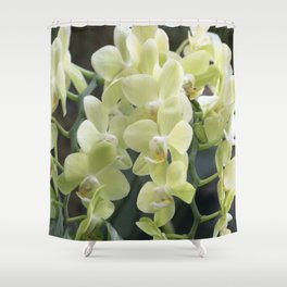 Longwood Gardens Orchid Extravaganza 69 Shower Curtain
