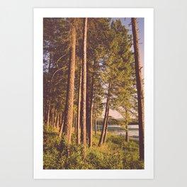 Retro Forest Art Print