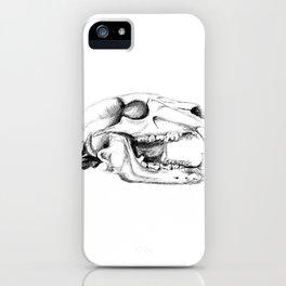 Bear Skull iPhone Case