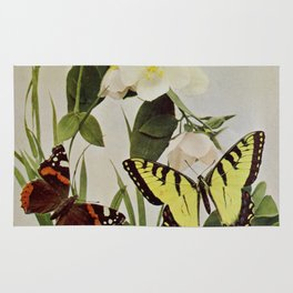 Vintage Butterflies in Nature Illustration (1899) Rug
